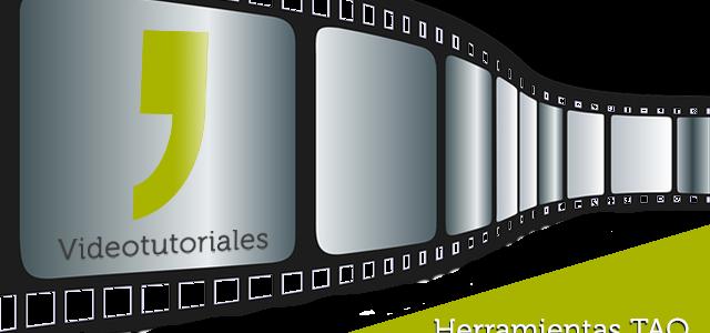 Videotutorial Wordfast
